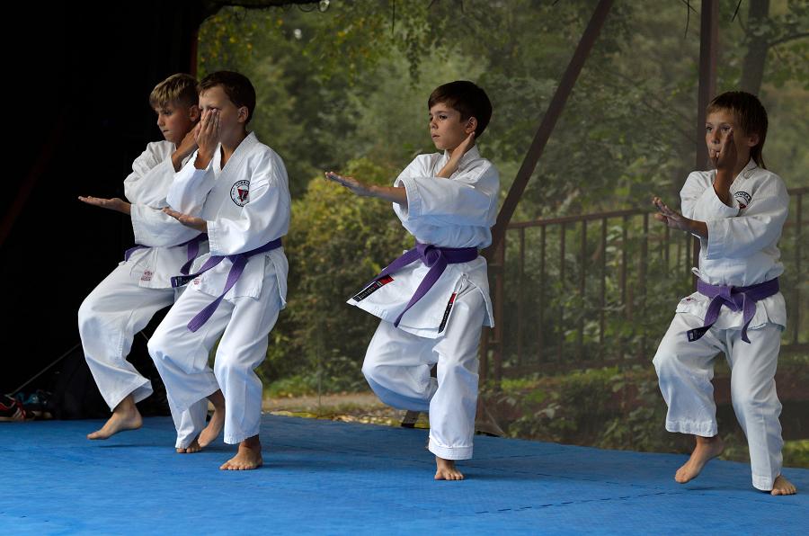 10 redenen om onzekere kinderen op een vechtsport te doen